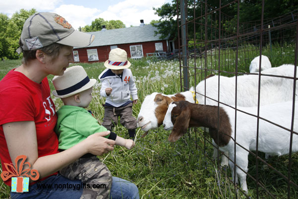 Gifts for Kids: Weekend Getaway to a Goat Farm