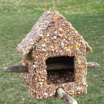 DIY Bird Feeder to Make with Kids