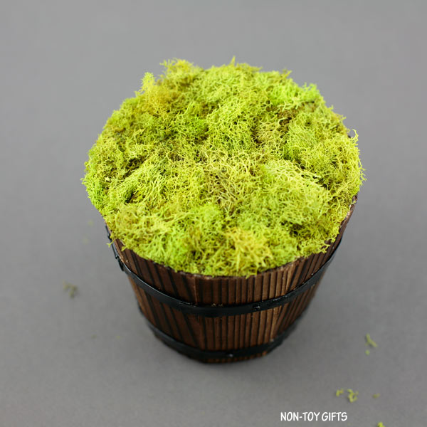 pot covered with moss