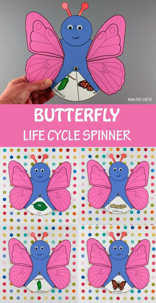 Butterfly life cycle spinner craft for kids