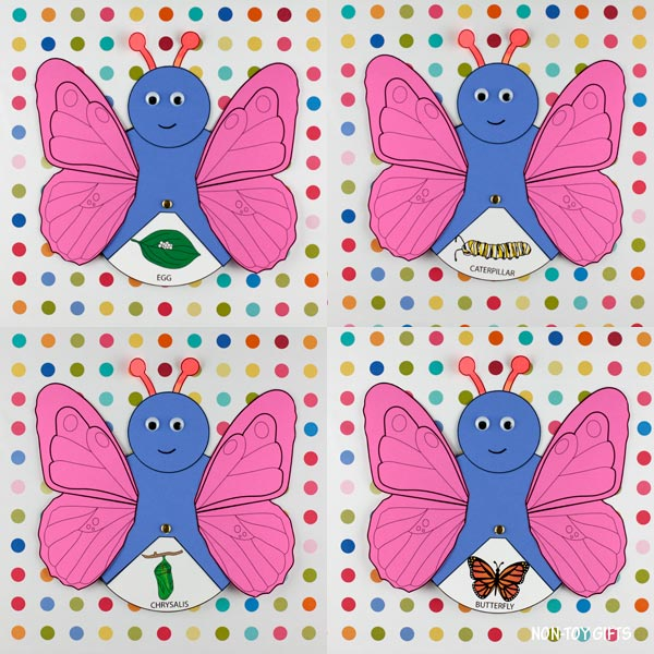 Butterfly life cycle spinner: egg, caterpillar, chrysalis and butterfly