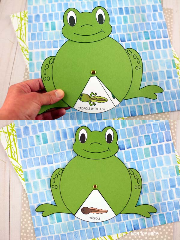 frog life cycle spinner craft for kids