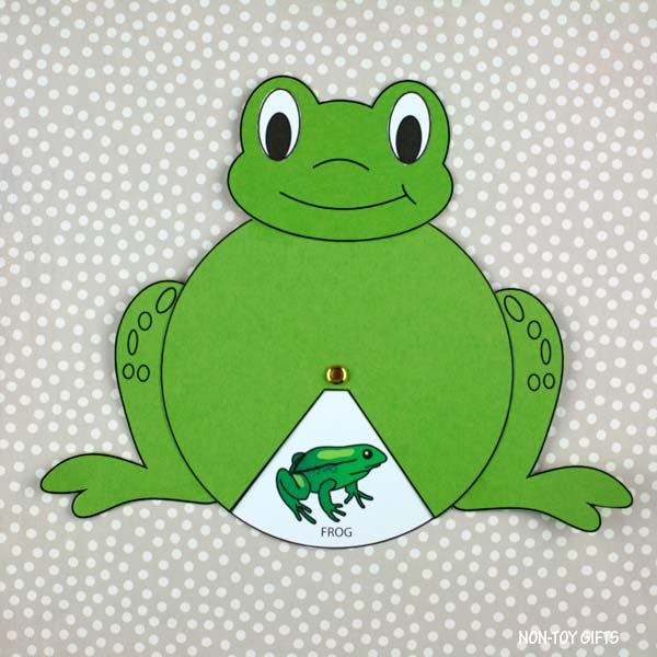 spring frog life cycle craft
