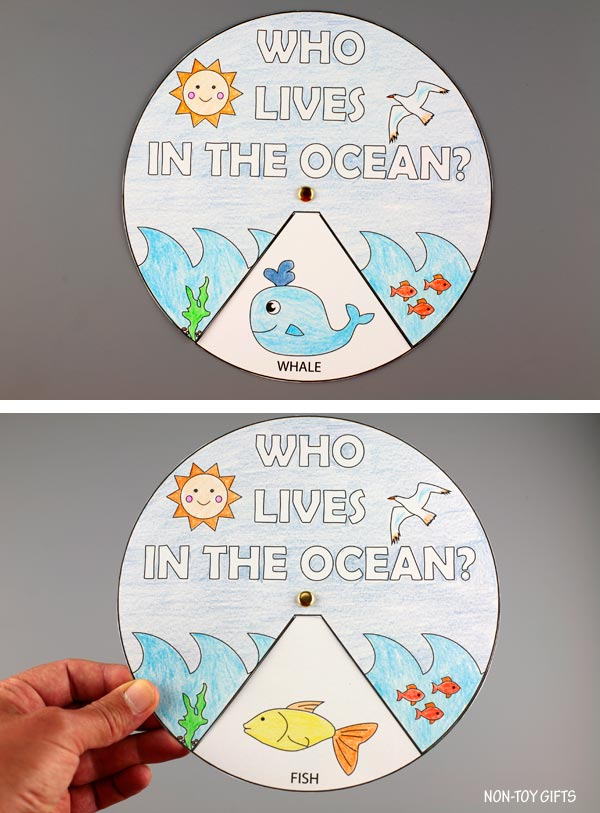 Who lives in the ocean? spinner craft